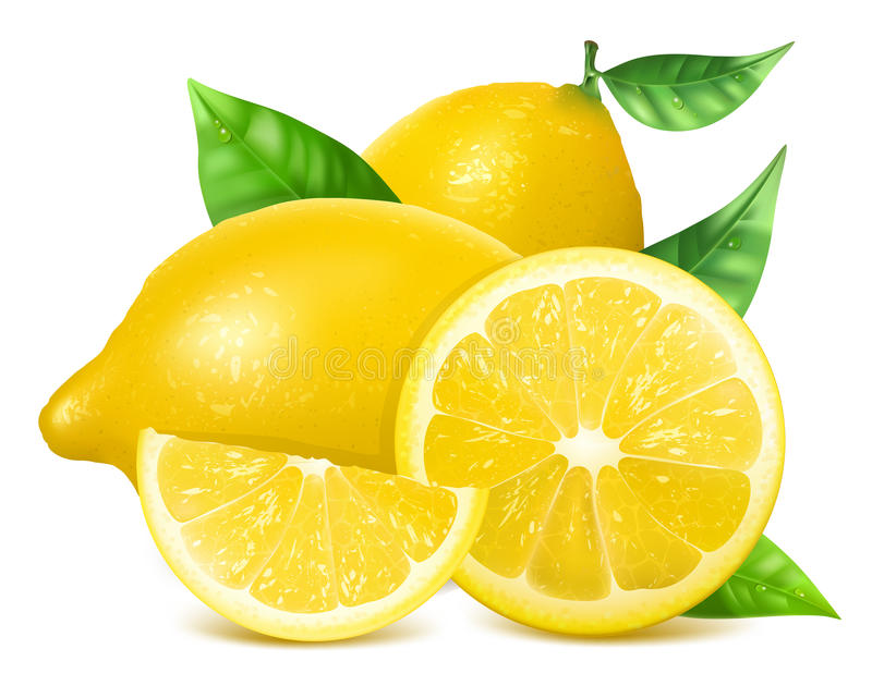 Limões frescos com folhas ilustração stock