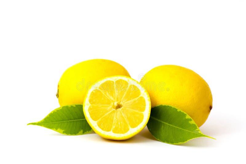 Limões frescos no fundo branco imagem de stock royalty free