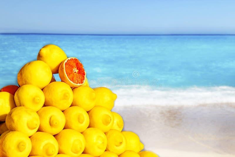 Limões grandes no mercado em C4marraquexe, Marrocos Frutos tropicais amarelos em África O fundo ? borr?o Há oceano claro e imagens de stock royalty free