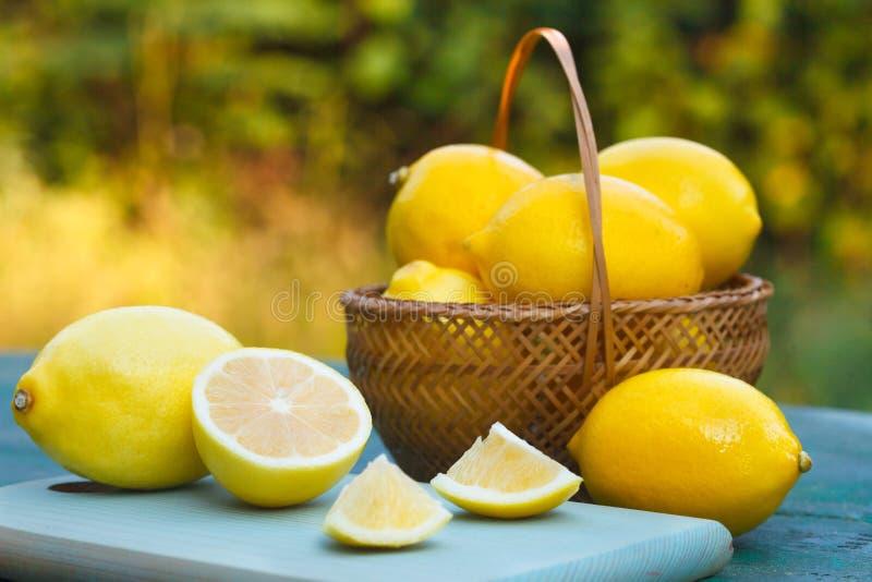 Limões orgânicos frescos fotos de stock royalty free