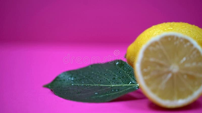 Limões tropicais close-up, alimento biológico de refrescamento, citrino da vitamina C, perfumaria imagens de stock royalty free