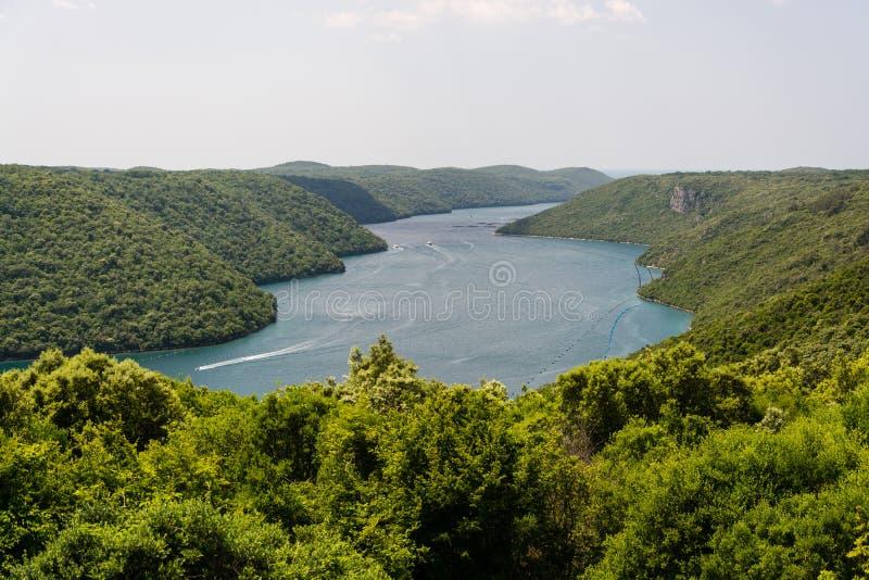 Lim-fjärd Istria, Kroatien royaltyfri fotografi