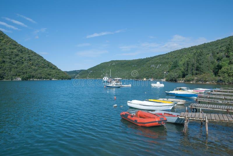 Lim Fjord Istria, Kroatien royaltyfri bild