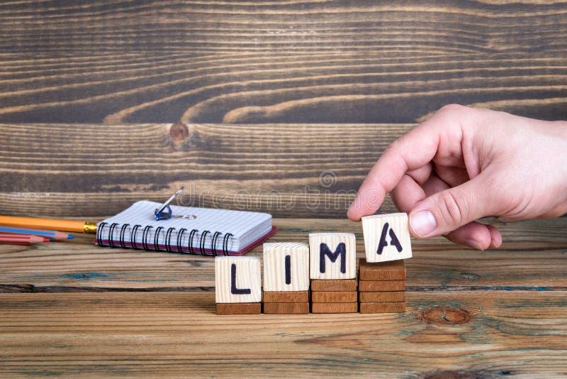 Lima en stad i Peru var många miljoner av folk bor royaltyfria foton