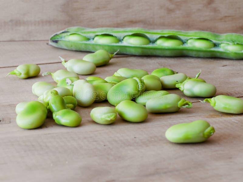 Limabohnen Seedcase lizenzfreie stockfotografie