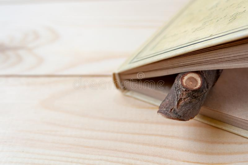 A limb of wood sticking out of a notepad with craft paper sheets lying on a wooden background stock images