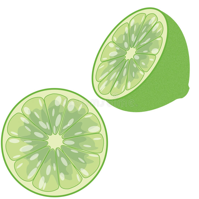 Download Lime stock vector. Image of organic, tart, market, delicious - 22436599