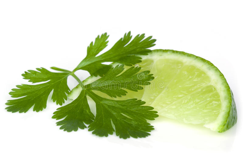Lime And Cilantro Or Coriander Stock Image
