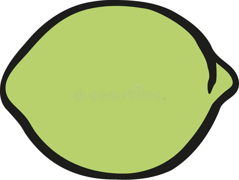 Lime citrus vector stock illustration