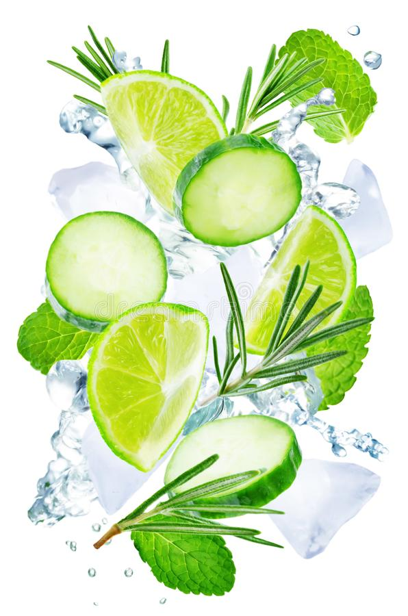 Lime, cucumber, rosemary and mint flying with ices and water splash isolated vector illustration