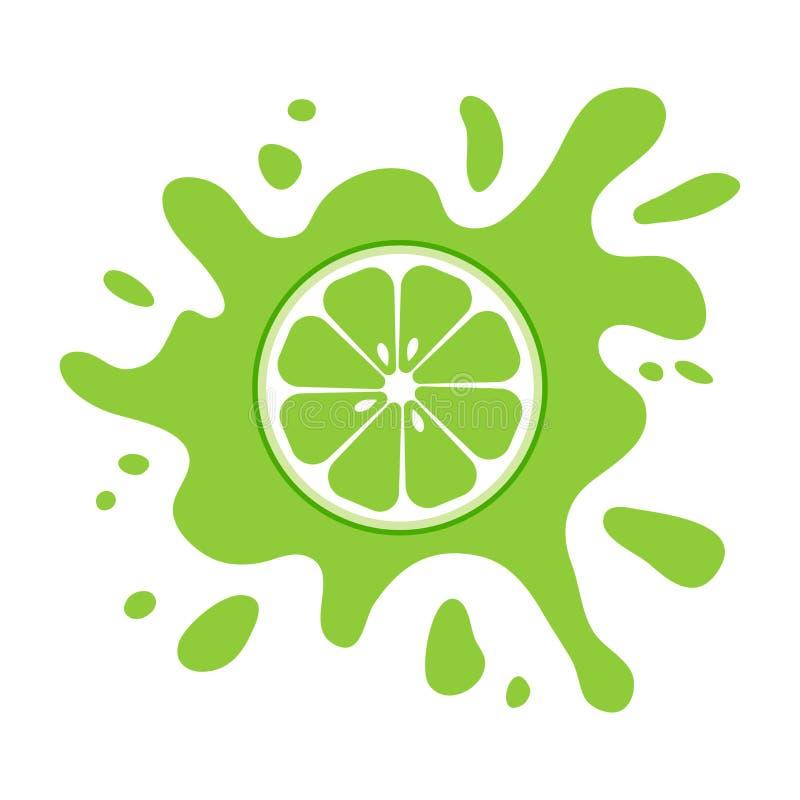 Lime fruit citrus, green splash. Vector illustration. Lime fruit citrus, green splash isolated on white background. Vector illustration royalty free illustration