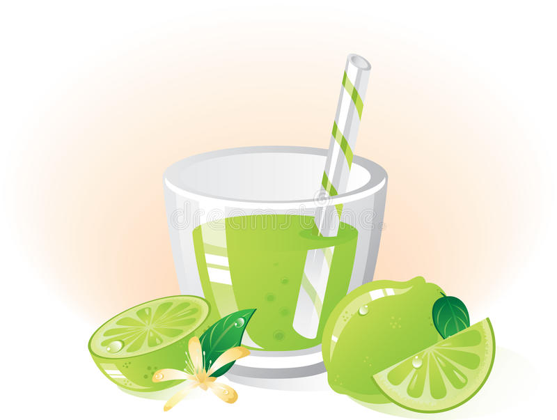 Download Lime fruit and drink stock vector. Image of section, glass - 13036296