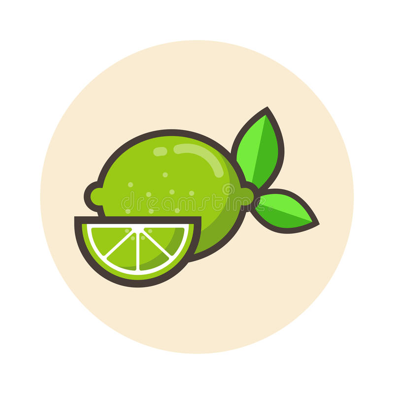 Lime icon. Vector image of a lime icon stock illustration
