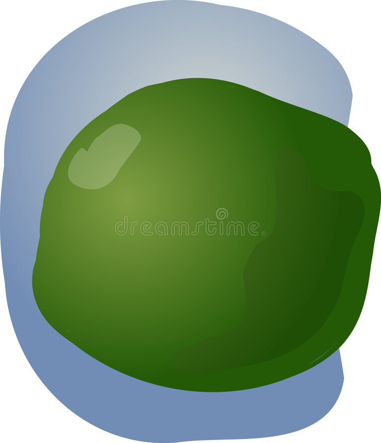 Lime Illustration Royalty Free Stock Photos