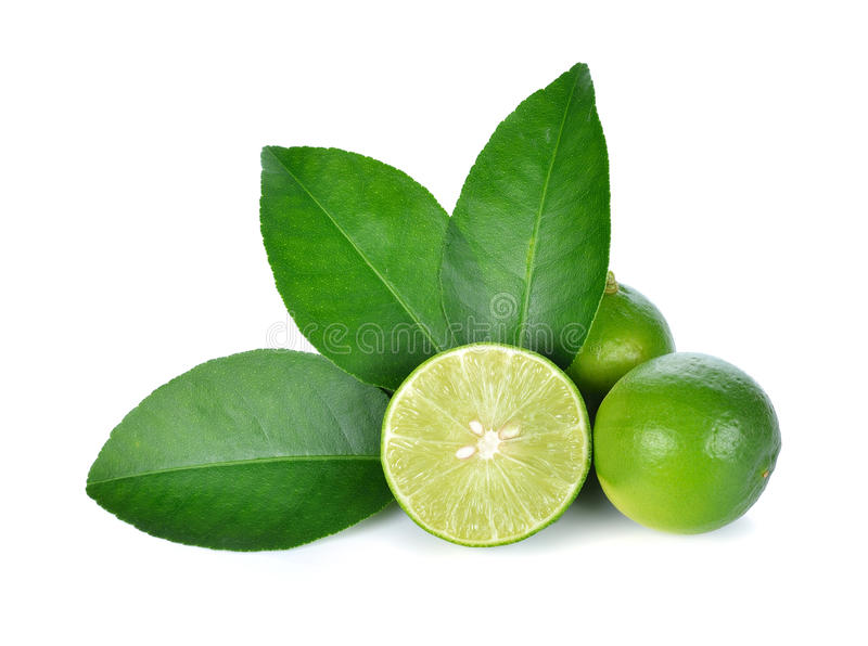 Lime. Isolated on white background stock photos