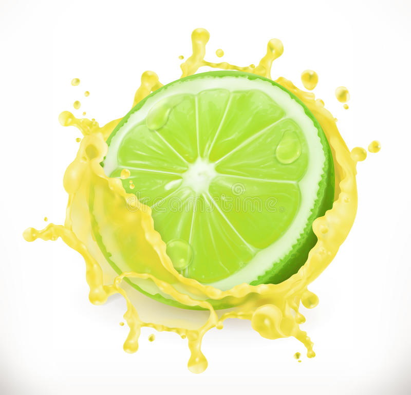 Lime juice. Fresh fruit, vector icon royalty free illustration
