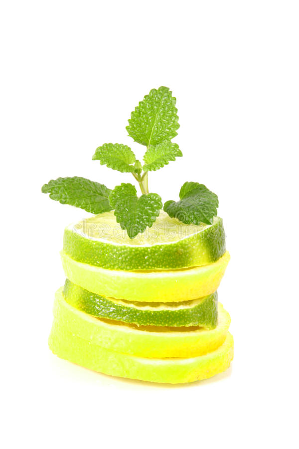 Lime and lemon royalty free stock photos