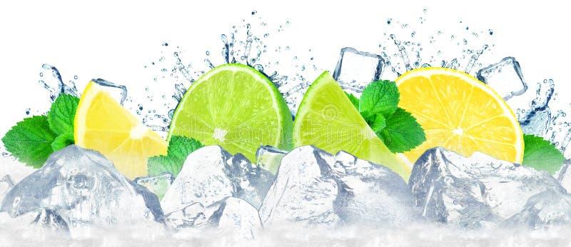 lime and lemon splash royalty free stock images