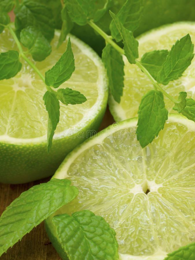 Download Lime with mint stock photo. Image of schnapps, mint, liquor - 25988758
