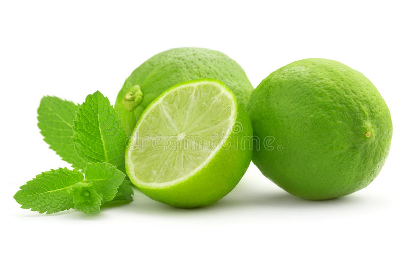Lime and mint leaf royalty free stock photography