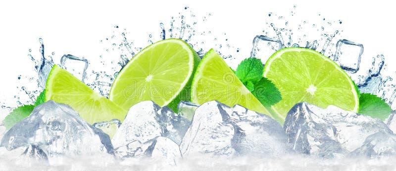 Lime water splash royalty free stock images