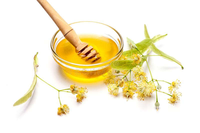 Limefrukt blommar med honung fotografering för bildbyråer