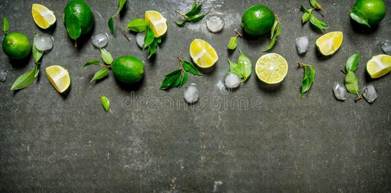 Limefruktbakgrund Limefrukter med sidor och is royaltyfri fotografi