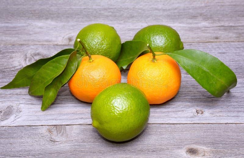 Limefrukter och tangerin på trätabellen royaltyfria foton