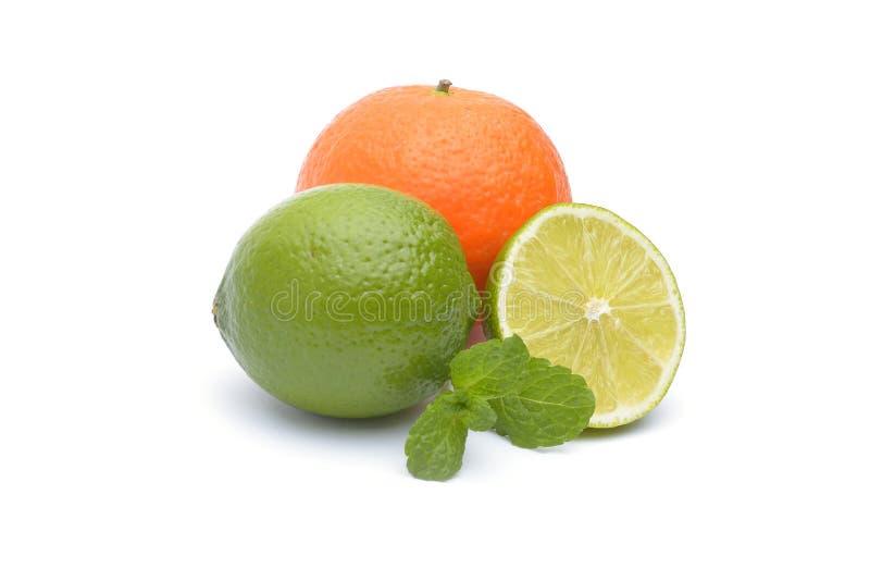 Limefrukterna och tangerina på vit bakgrund arkivbild