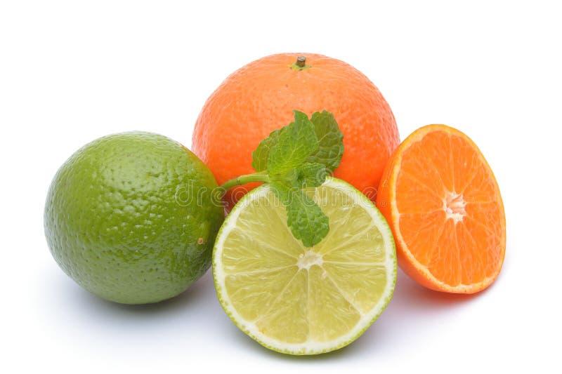 Limefrukterna och tangerina på vit bakgrund royaltyfria foton
