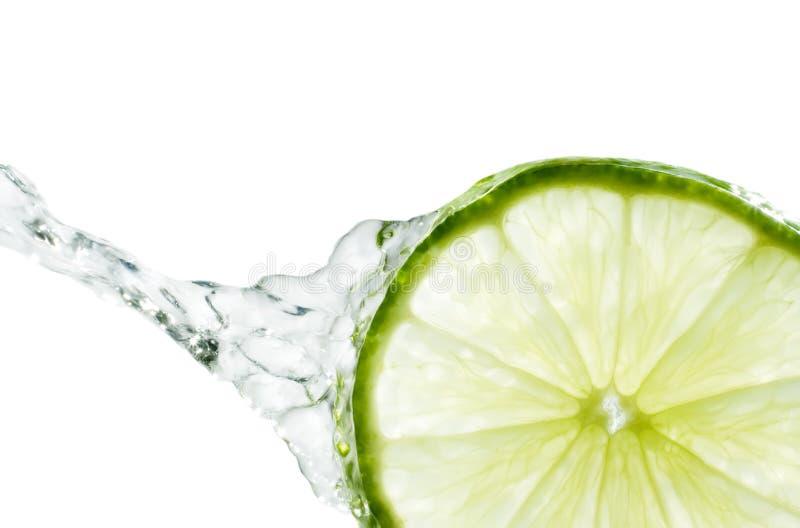 limefruktfärgstänk fotografering för bildbyråer