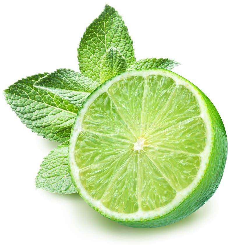 limefruktmint royaltyfri fotografi