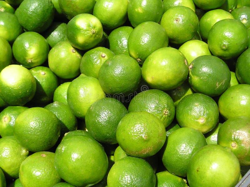 Download Limes Closeup stock image. Image of food, closeup, citrus - 183643