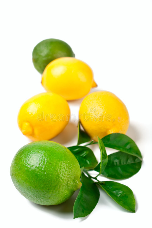Download Limes and lemons stock photo. Image of isolated, yellow - 7791426