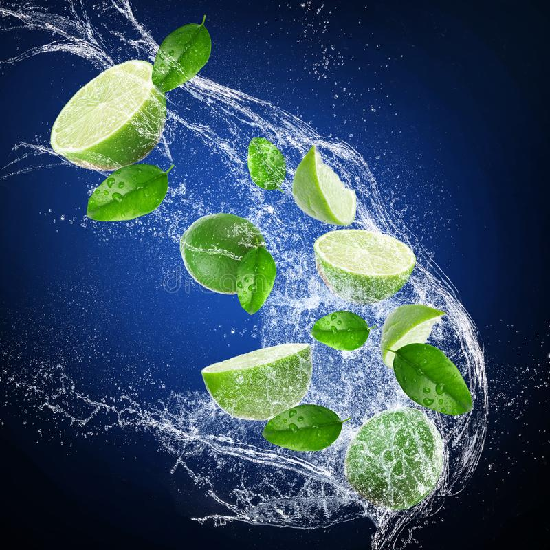 Limes with water splash on dark background stock image