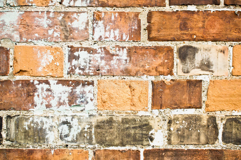 Limescale. Part of a brick wall showing limescale deposits due to moisture royalty free stock images