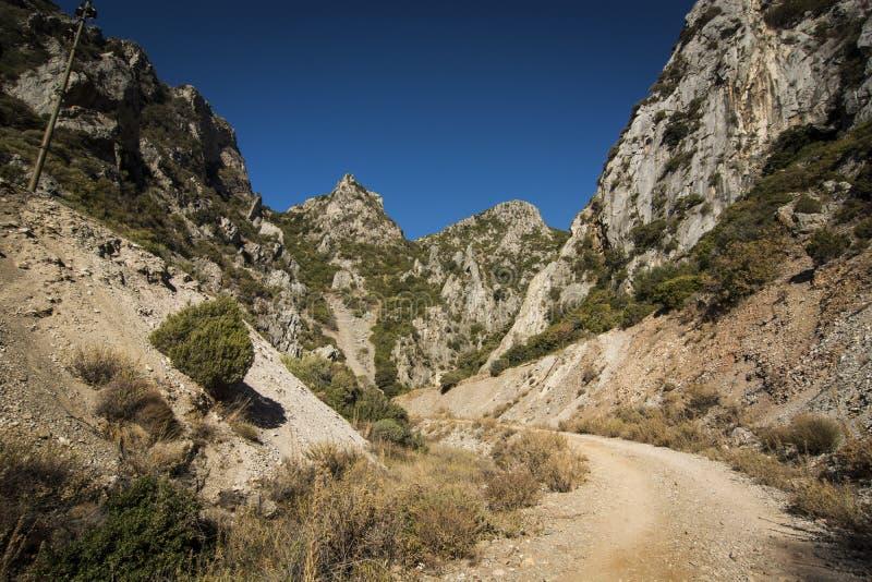 Sardinia.Limestone Canyon stock photo