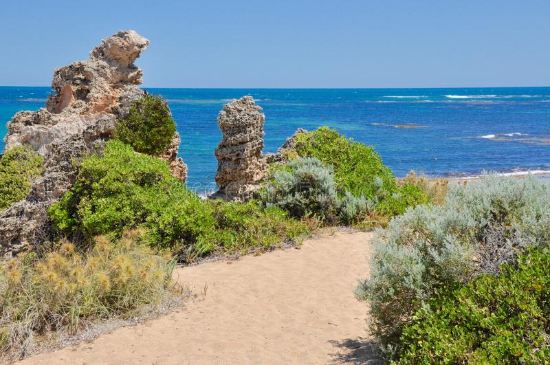 Limestone Decorated Coastal Path. Vegetated limestone rocks on sandy coastal low-dune path at Cape Peron in Western Australia under a blue sky with an Indian royalty free stock photos
