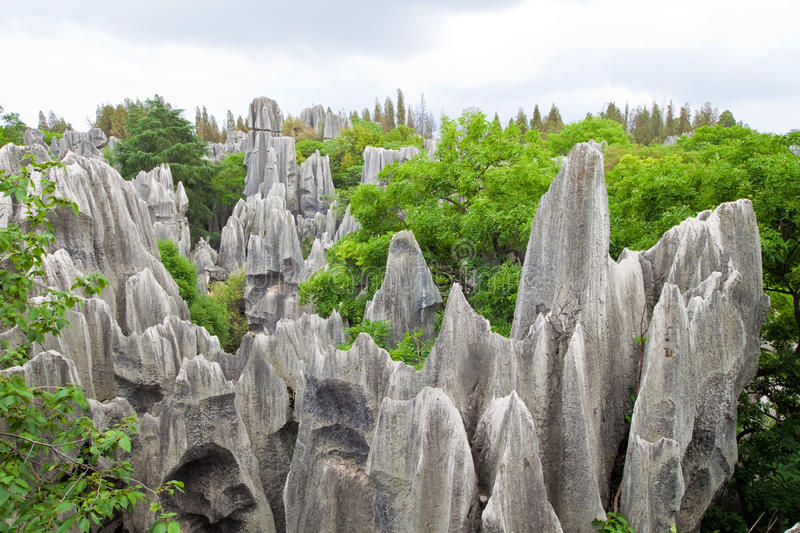 Download Limestone Forest At Kunming Stone Forest Or Shilin Stock Photo - Image: 25448218
