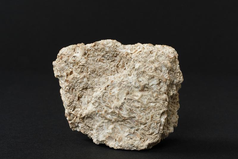 Limestone mineral on black background. Limestone composed mainly of skeletal fragments of marine organisms such as coral, forams and molluscs from Crimea region stock image