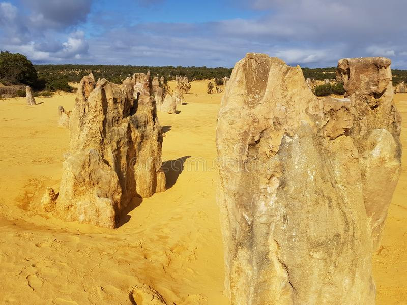 Pinnacle Desert Nambung National Park Perth Western