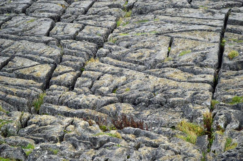 Limestone pavement above malham cove yorkshire uk. A limestone pavement is a natural karst landform consisting of a flat, incised surface of exposed limestone stock images