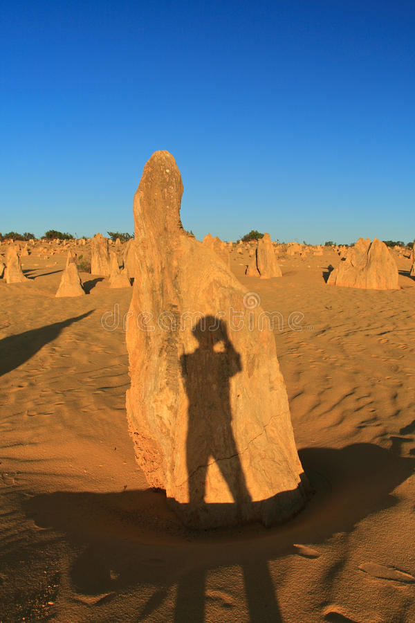 Limestone pillars with photographer shadow royalty free stock image