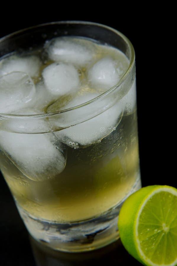 Limette et bitter de citron photo stock