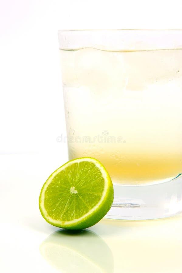 Limette et bitter de citron photographie stock libre de droits