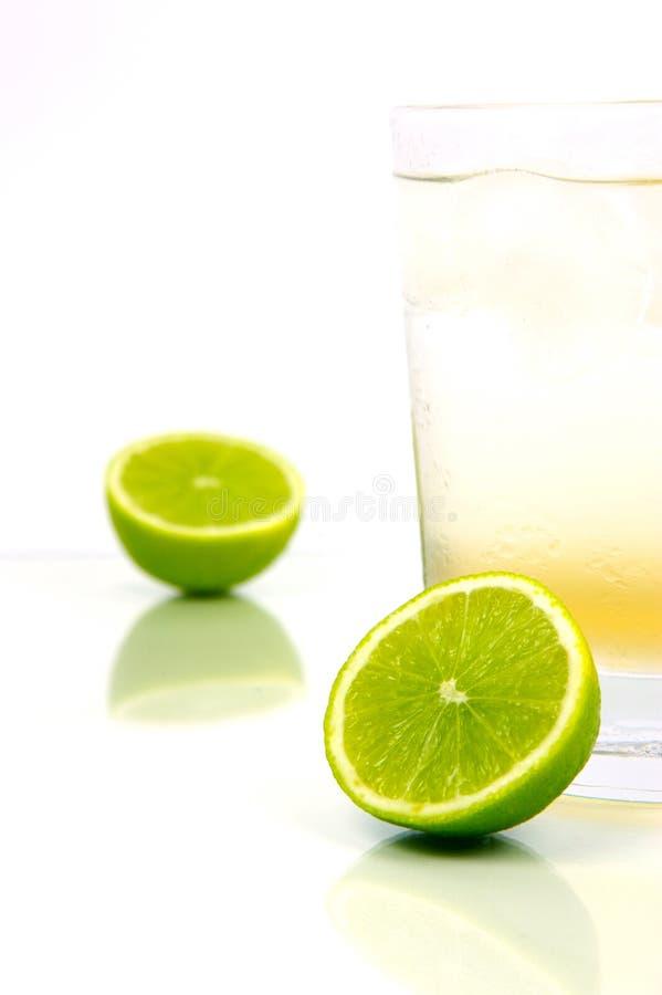 Limette et bitter de citron photographie stock