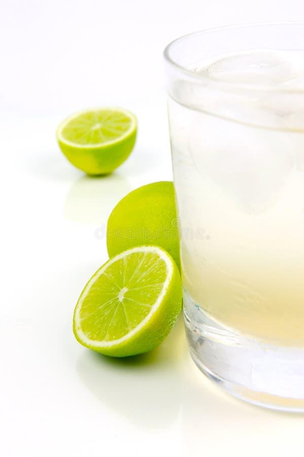 Limette et bitter de citron image libre de droits