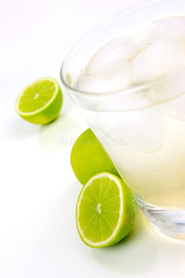 Limette et bitter de citron photos libres de droits