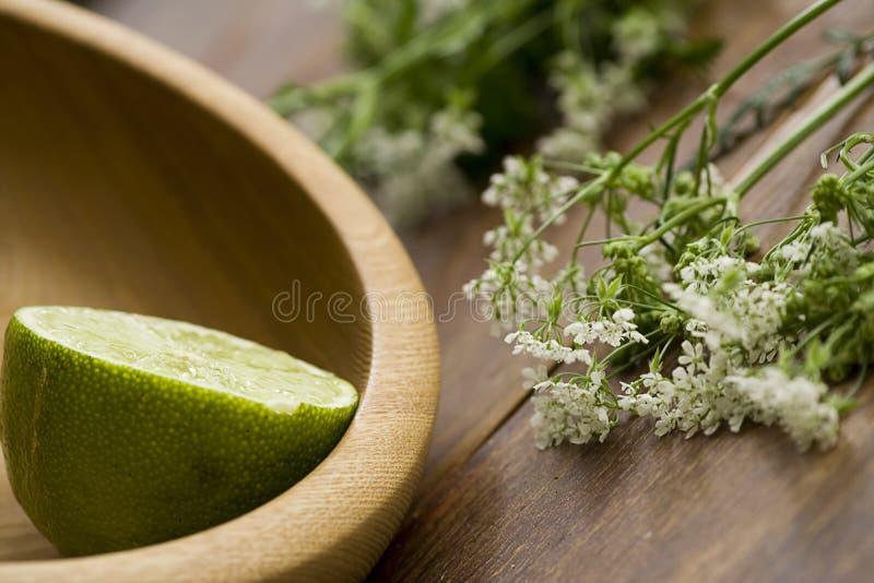 Limette et fleurs photo libre de droits