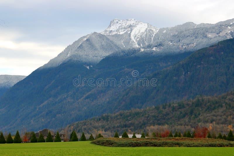Limite des neiges éternelles et bâti Cheam du Canada photographie stock libre de droits